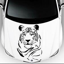 Wild Tiger Predator Cat in Car Hood Vinyl Stickers Decals Animals Decor OS21