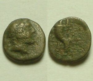 Kaunos-in-Caria-191-BC-Rare-Ancient-Greek-Coin-Alexander-the-Great-Cornucopia
