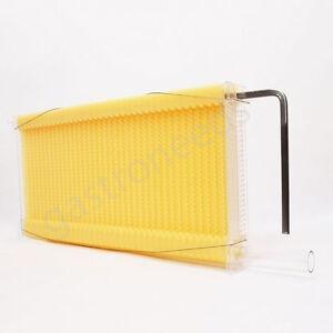 1 wabe automatische honigproduktion bienenhaus bienenstock. Black Bedroom Furniture Sets. Home Design Ideas