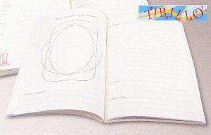 CARTONAGGIO - Interno Libro degli ospiti - 24x17cm
