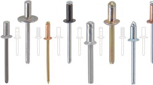 50 3,2x8 Edelstahl Blindniete Mehrbereich Flachkopf A2//A2 POPNIETE 1,5-4,0mm