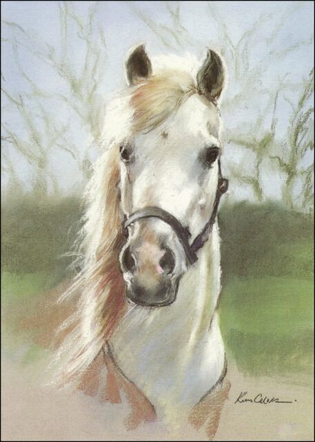 A Birthday Greetings Card Arab Pony - pastel art for horse lovers.