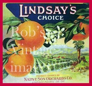 Lindsay California Blue Ridge Orange Citrus Fruit Vintage Crate Label Art Print