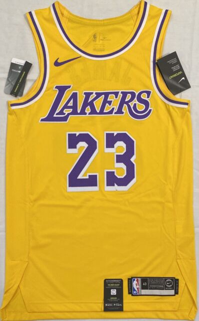 Nike Los Angeles Lakers Lebron James Stitched Jersey Aa7265 735 ...