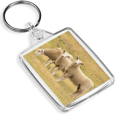 Causey Pike Countryside Keyring English Green Fields England Cool Gift #16125