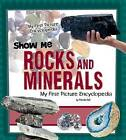 Show Me Rocks and Minerals by Patricia Wooster (Hardback, 2013)