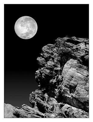 Idyllwild Full Moon And A Rock Night Scene Black /& White 12 x 16 Fine Art Print