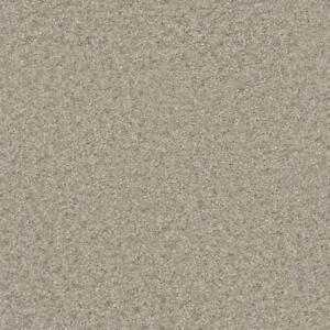 Dreamweaver 45 oz carpet Hamilton Ontario Preview