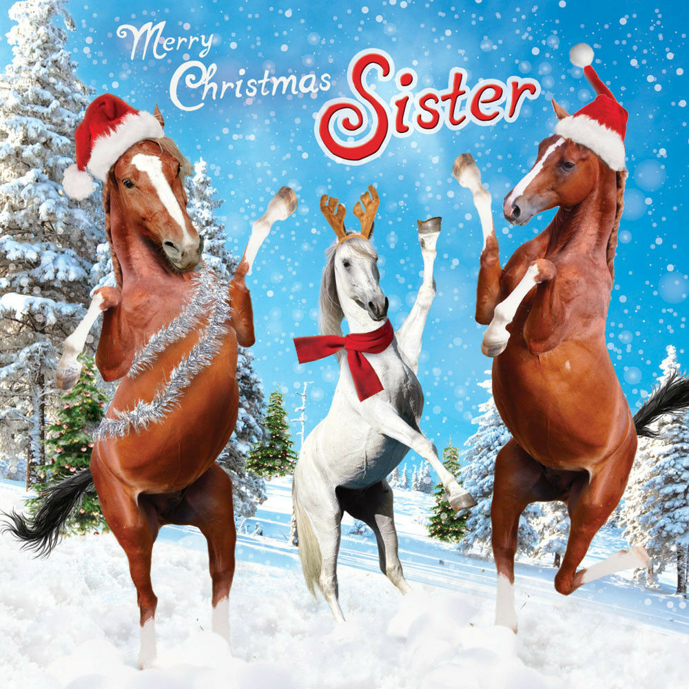 Sister Christmas Card Pony Party Dancing Horses Funny Horse Santa ...