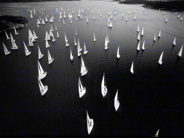 BLACK WHITE SAIL BOAT RACE SEA PHOTO ART PRINT POSTER PICTURE BMP1439B