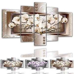 BM-color-y-tamano-a-elegir-Foto-en-lienzo-7909-orquideas-flores-BROTES-Botones