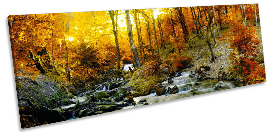 Sunset Autumn Forest Creek River CANVAS WALL ART Panorama Framed Print