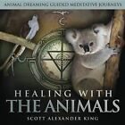 Healing With The Animals Animal Dreaming Guided Meditative Journeys by King S