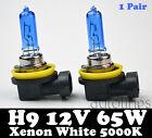 2 x H9 12V 55W Xenon White 5000k Halogen Blue Car Head Light Lamp Globes / Bulbs