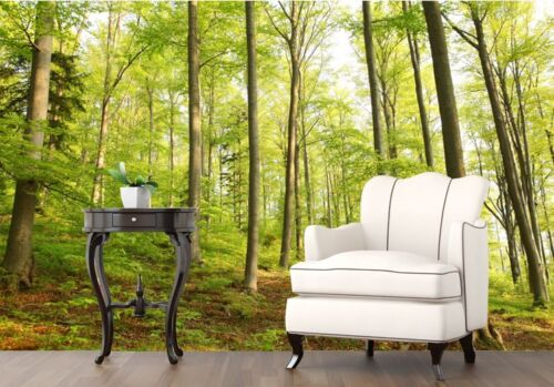 3D Slender Trees Forest Wall Paper Wall Print Decal Wall Deco Indoor wall Murals