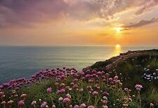 LAND'S END Photo Wallpaper Wall Mural NATURE SUNSET SUNRISE OCEAN  368x254cm