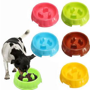 Pet Dog Slow Down Eating Feeder Dish Pet Cat Puppy Feeding ... - photo#17