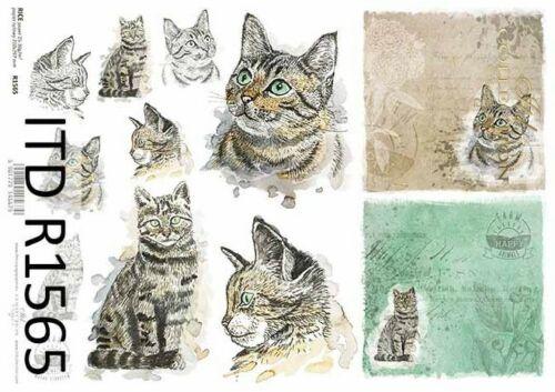 Reispapier-Motiv Strohseide-Decoupage-Vintage-Katze-R1565