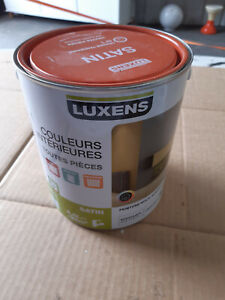 Pot De Peinture Multi Support Luxens Ebay