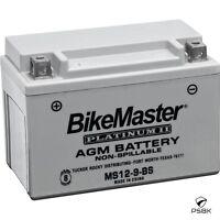 Yamaha 2001-2007 Xt225 Bikemaster Platinum Ii Battery