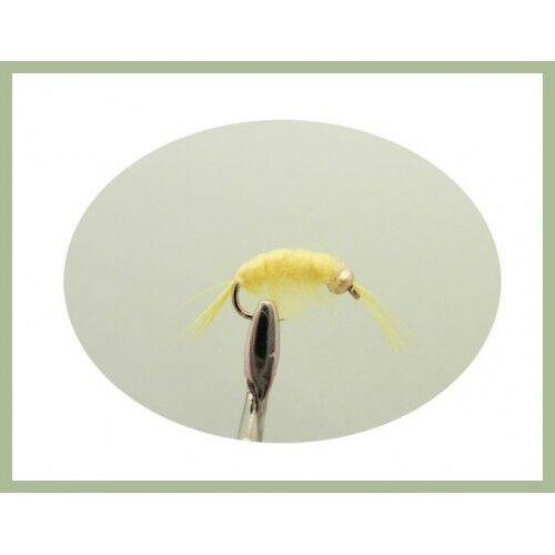 Shrimp Trout Flies, 6 Yellow Scud Freshwater Shrimp Choice of sizes, Fly Fishing