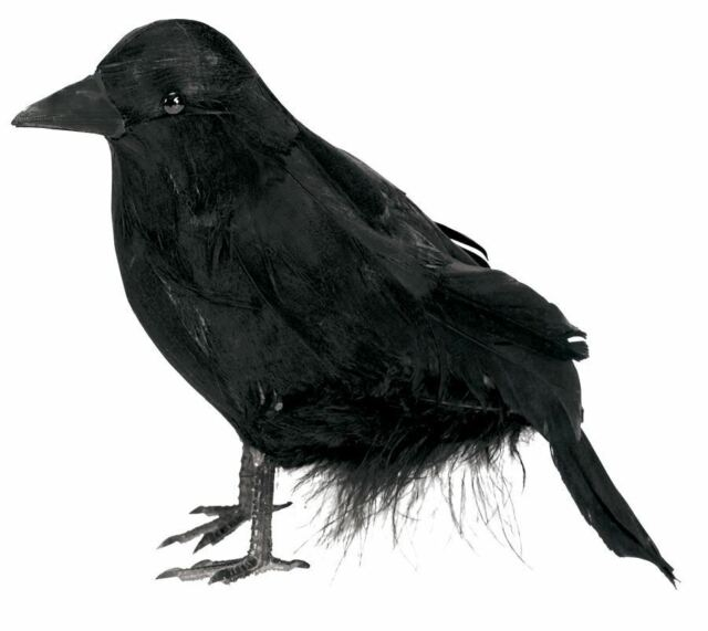Halloween Decoration Small Feathered Raven Black Bird Crow Party Accessory