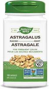 Nature-039-s-Way-Astralagus-Root-for-frequent-Cold-470-mg-100-Vegetarian-Capsules