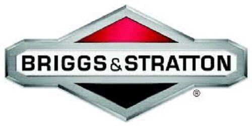 GENUINE BRIGGS /& STRATTON OIL SEAL 691952 original Briggs oil seal