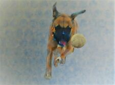 Boxer Dog Catch the Ball Fine Art Print of original Painting