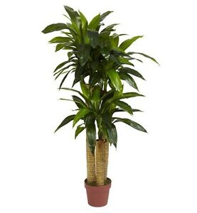 Details about Silk Plants And Trees Artificial Living Room Corn Stalk  Dracaena Decorative Fake
