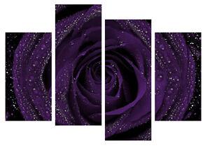 Image Is Loading Dark Purple Rose Canvas Wall Art Picture Split