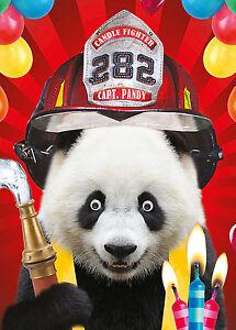 Geburtstagskarte Alles Gute Zum Geburtstag Lustig Tiere Panda