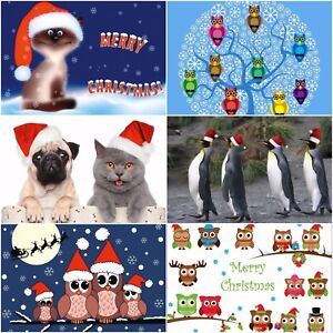 Weihnachtskarten Tiere.Details Zu Witzige Weihnachten Lustiges Weihnachtskarten Set 24 Karten Mit Tieren