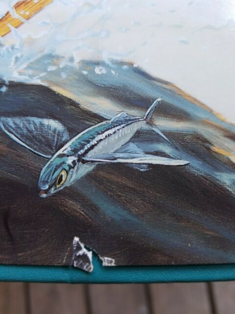 Dolphin: The Perfect Gamefish