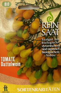 Coktailtomate-Dattelwein-Saatgut-Samen-Demeter-aus-biologischem-Anbau