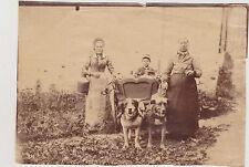 RARE ET ANCIENNE PHOTO/ATTELAGE CHIENS/CHARIOT/ BIDONS LAIT/FEMMES/GARCONNET