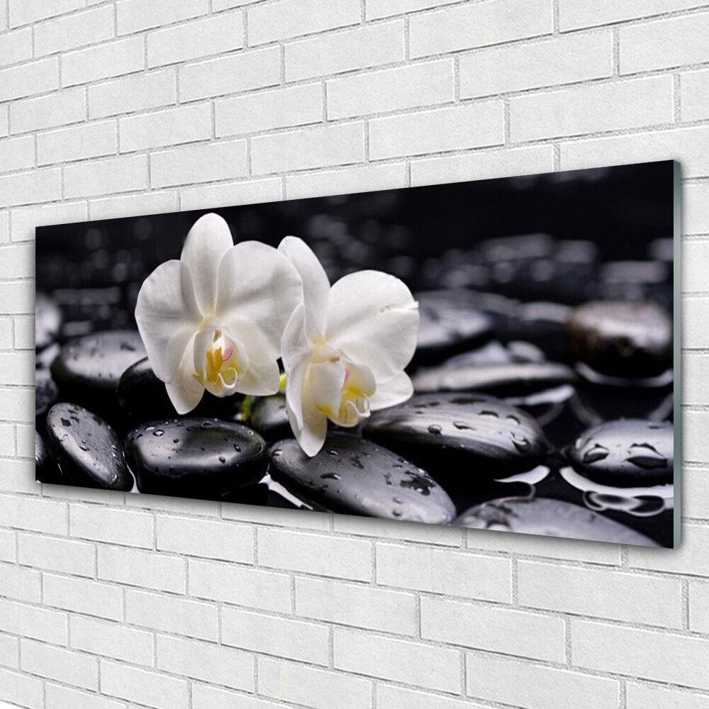 Impression sur verre Wall Art 125x50 Photo Image Fleur Pierres Art