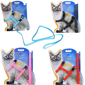 solid-Cat-Puppy-Adjustable-Harness-Collar-Nylon-Leash-Lead-Safety-Walking-Rope