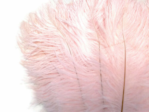 """10 Pieces 8-10/"""" Baby Pink Ostrich Dyed Drabs Feathers Wedding Prom Craft Wing"""