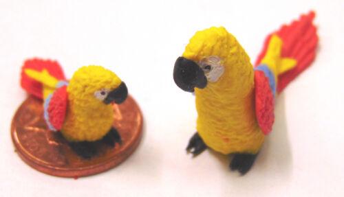Escala 1:12 Grande Y Pequeño Amarillo loros casa de muñecas en miniatura de aves exóticas P6