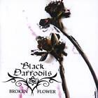 Broken Flower von Black Daffodils (2013)