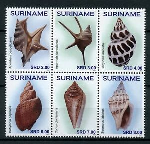 Suriname 2017 MNH Seashells 6v Block Sea Shells Marine Stamps