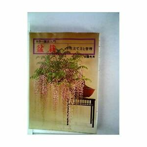 Bonsai-tailoring-how-and-management-1979-color-gardening-Introduction