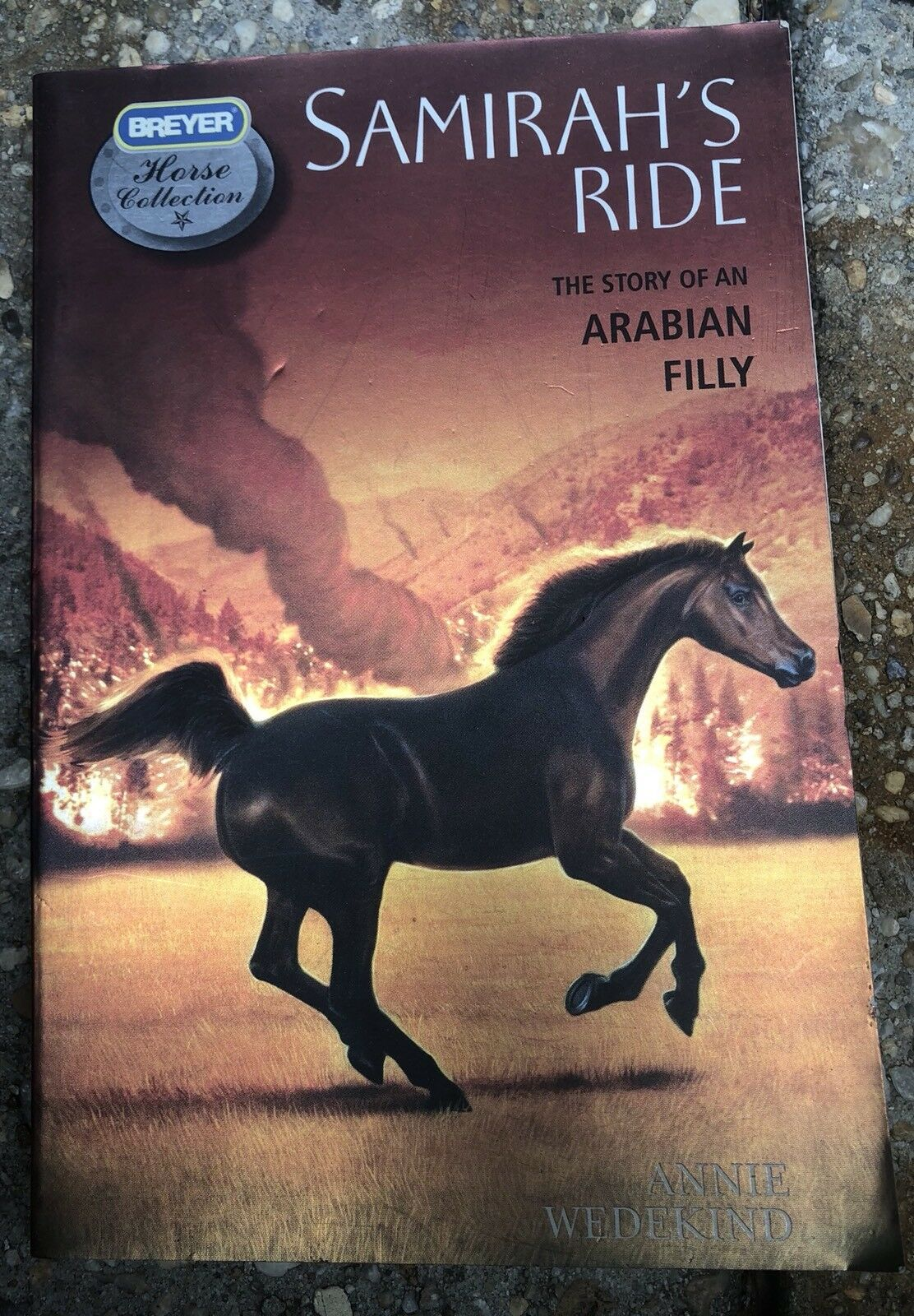 Breyer Samirah S Ride Horse And Book Set 6139 For Sale Online Ebay