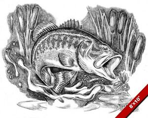 Largemouth Bass Jumping In Cattails Fish Drawing Art Real Canvas