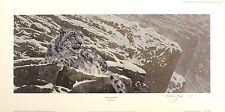 "Anthony GIBBS ""Snow Leopard"" Big Cat Mountain firmato! dimensioni: 32cm x 65cm NUOVO RARO"
