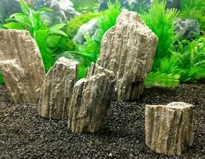 Natural Glimmer Wood Stone Aquarium Aquascaping Iwagumi Fish Tank Rock Ebay