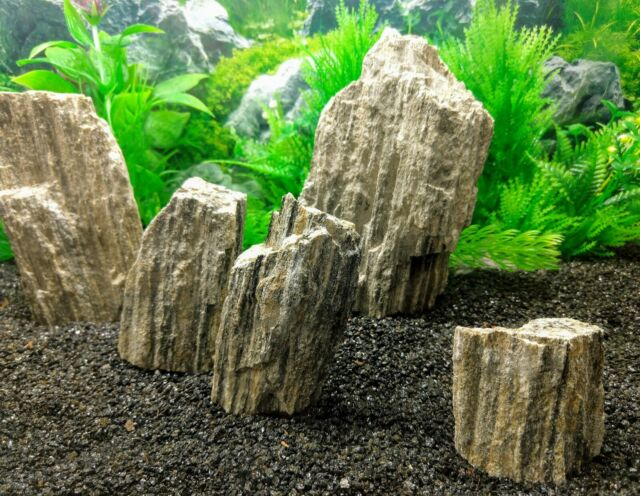 20 Kg Natural Black Rock Stone Aquarium Iwagumi Plant Shrimp Fish Aquascaping For Sale Online Ebay