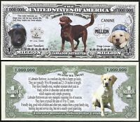 Lot Of 500 Bills - Labrador Retriever Dog Bill Puppy & Adult Pics, Facts On Back