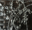 New-50Pcs-Acrylic-Drops-Crystal-Bead-Spray-Wired-Stems-Wedding-Craft-Decor thumbnail 4